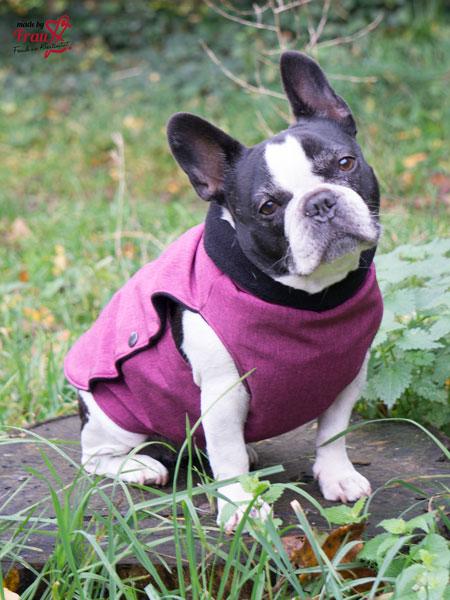 Hundemantel aus Softshell und Baumwollfleece