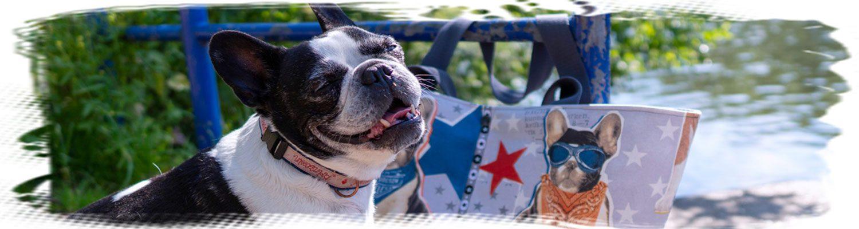 Strandtasche für den Hund